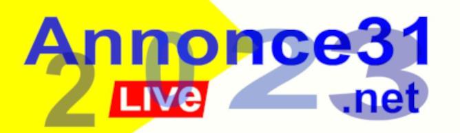 www.annonce31.net